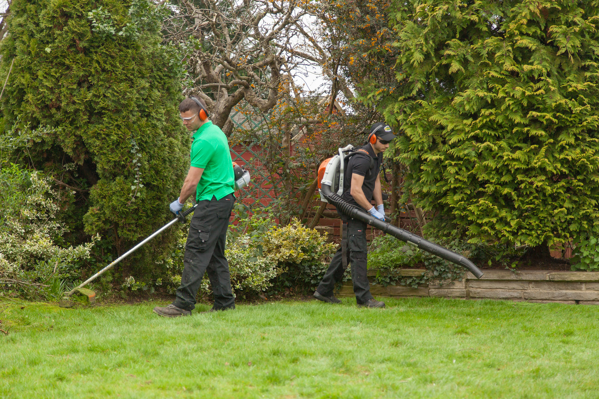 Garden Maintenance Snow White Cleaners Professional