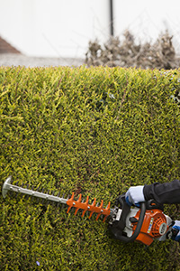 Hedge Cutting Kingston upon Thames